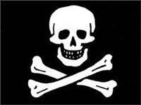 Talamex Jolly Roger Pirate Flag