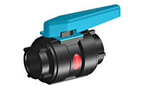 Trudesign Composite BSP Ball Valve